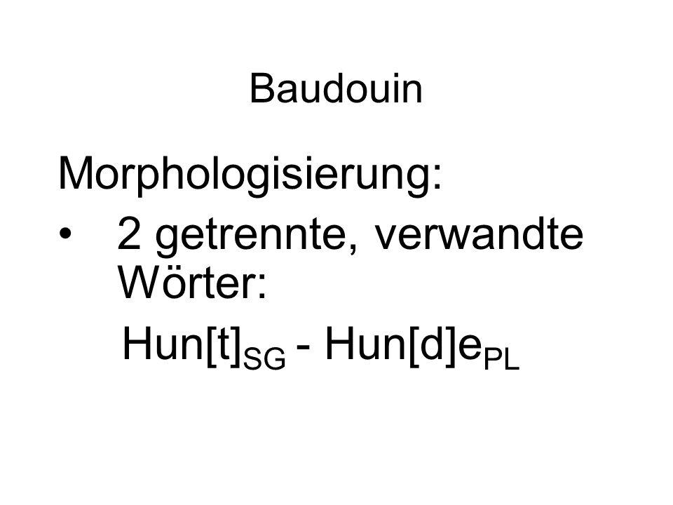 2 getrennte, verwandte Wörter: Hun[t]SG - Hun[d]ePL